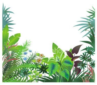 Jungle Trees Clip Art | Tropical Rainforest Cartoon Border Pictures