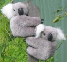 K. Large 3.25-inch clip-on koalas in set of six