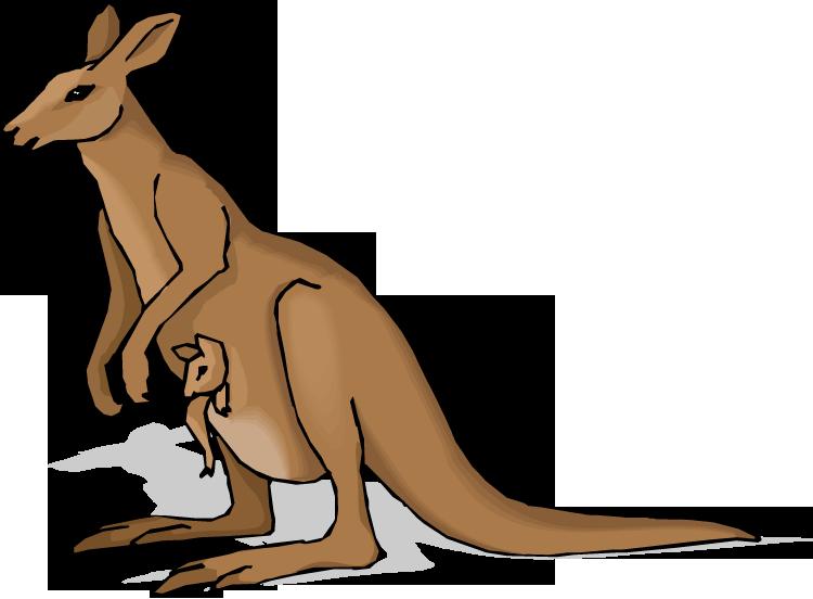 Kangaroo Clip Art-Kangaroo Clip Art-12