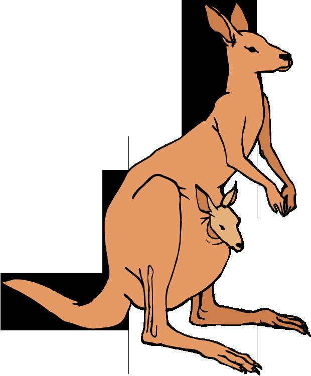 Kangaroo Clip Art-Kangaroo Clip Art-8