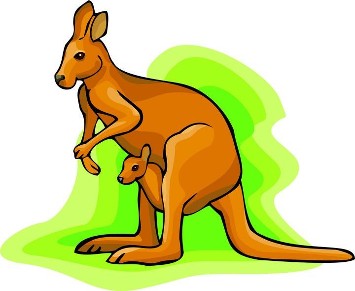 Kangaroo Clipart-Kangaroo Clipart-11