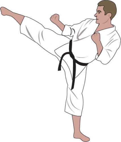 Karate Pic-Karate Pic-8