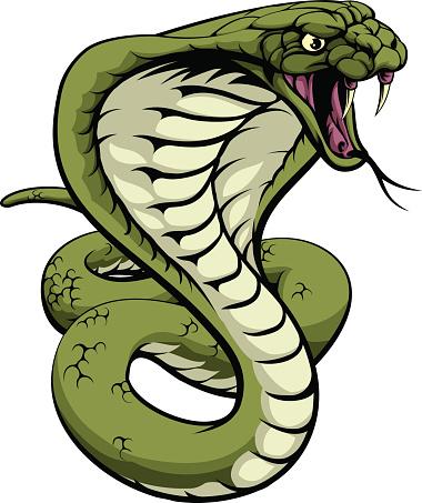 King Cobra Snake vector art .