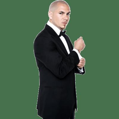 Pitbull Standing