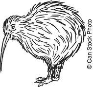 cartoon kiwi Clip Artby lineartestpilot2/17 kiwi bird - hand drawn, sketch,  cartoon illustration of kiwi