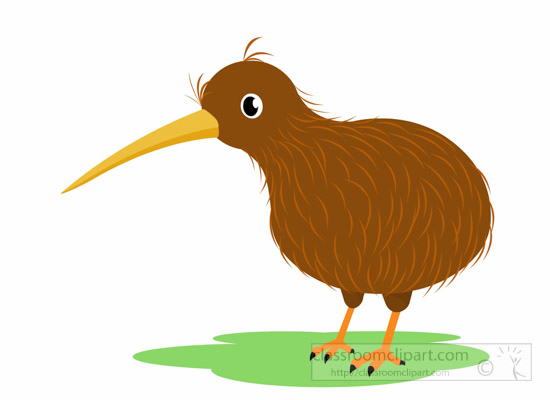 Kiwi-bird-clipart-1014.jpg-kiwi-bird-clipart-1014.jpg-10