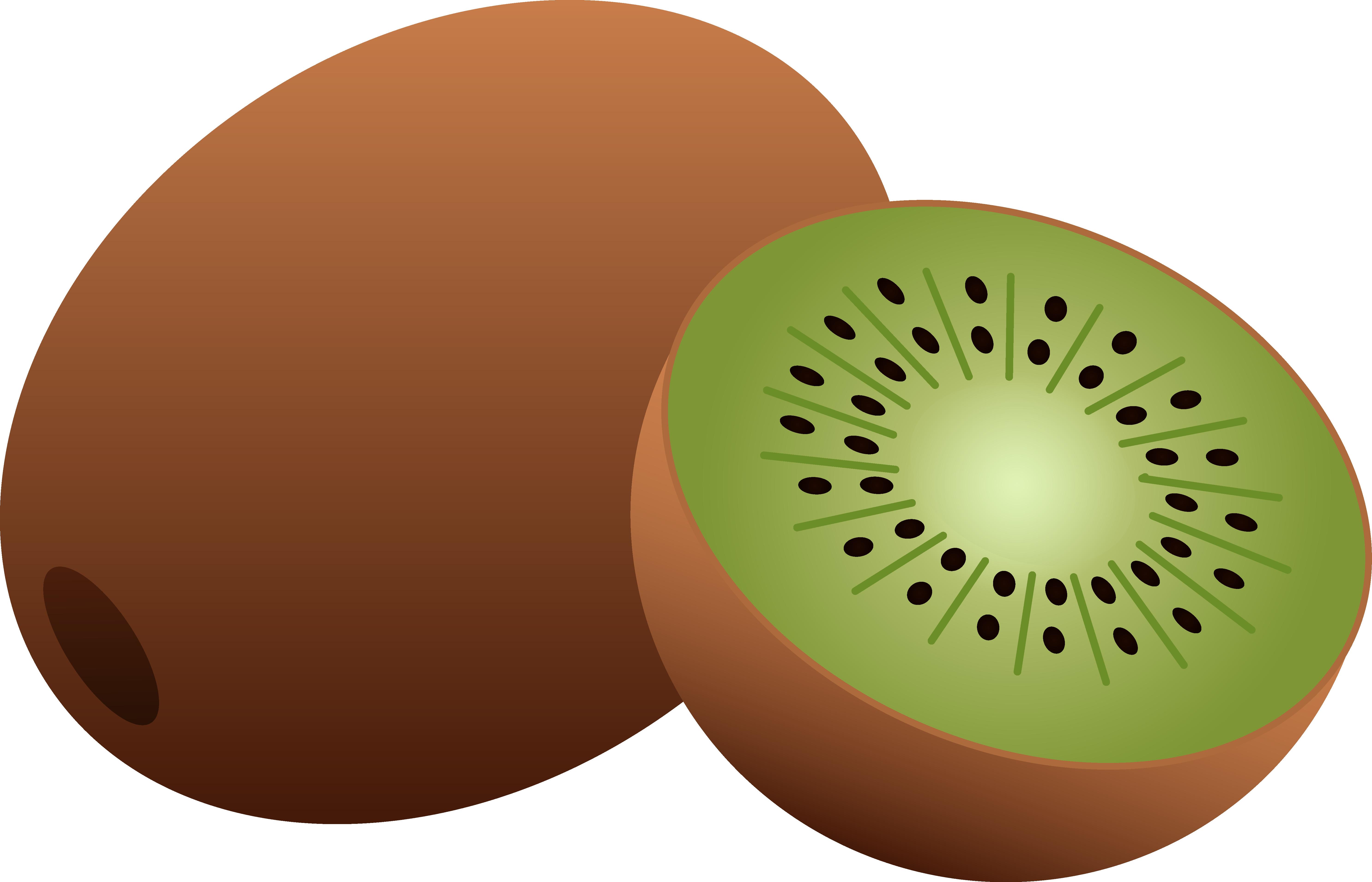 Kiwi Clip Art-Kiwi Clip Art-3