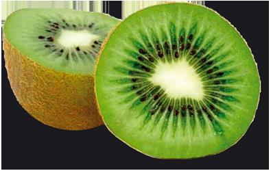 Kiwi clip art. Kiwi PNG image .