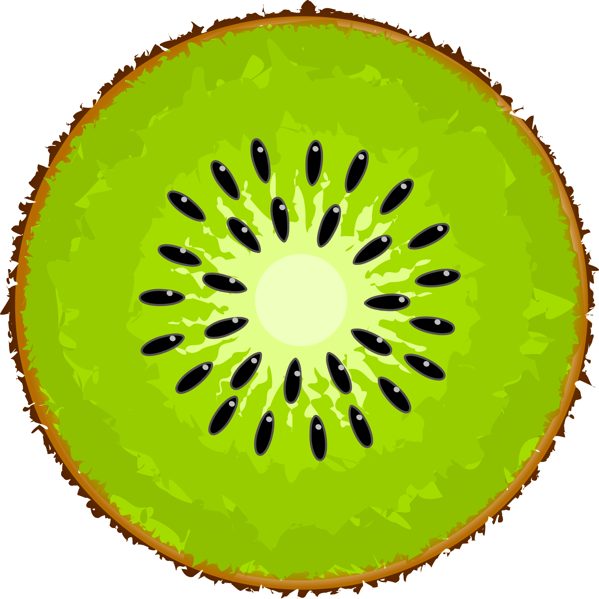Kiwi Clipart Image Kiwi Fruit. Kiwi Slice PNG Image