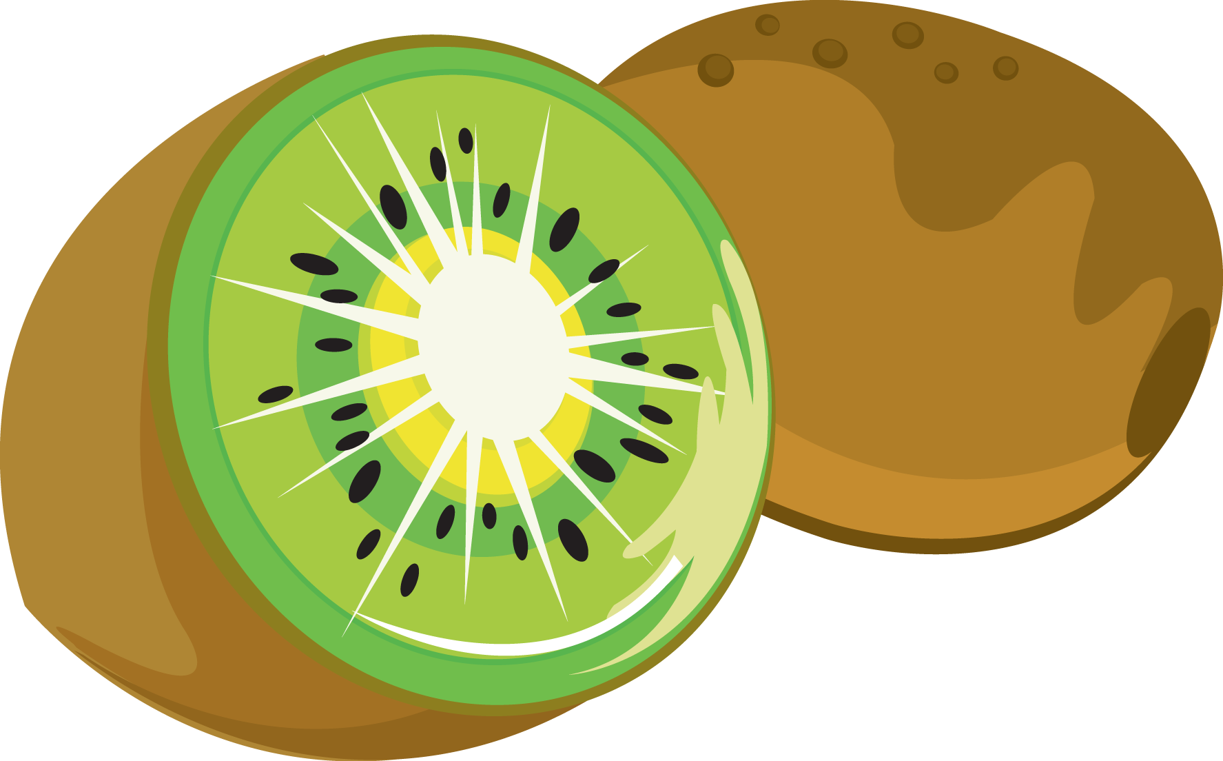 Kiwi Clipart-Kiwi Clipart-1