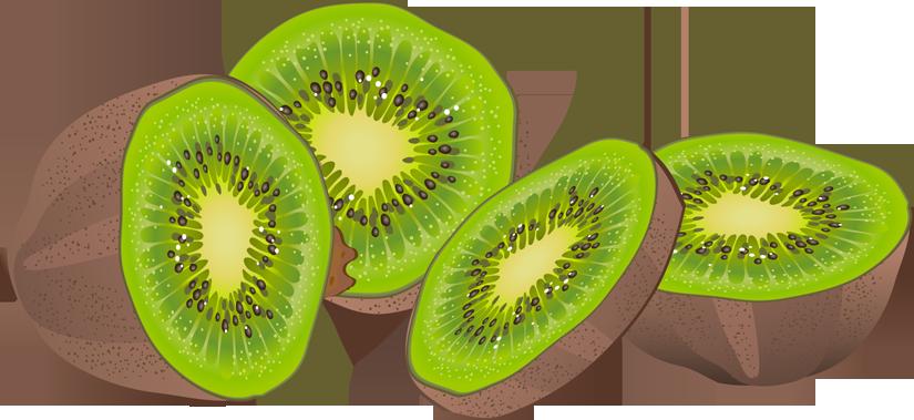 Kiwi Fruit Clipart Fruit Exotique Kiwi