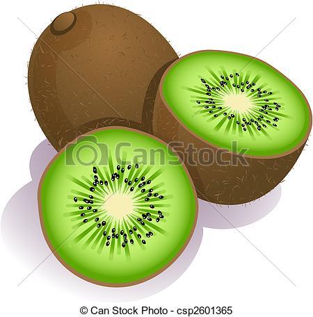 kiwi - Vector illustration - ripe kiwi