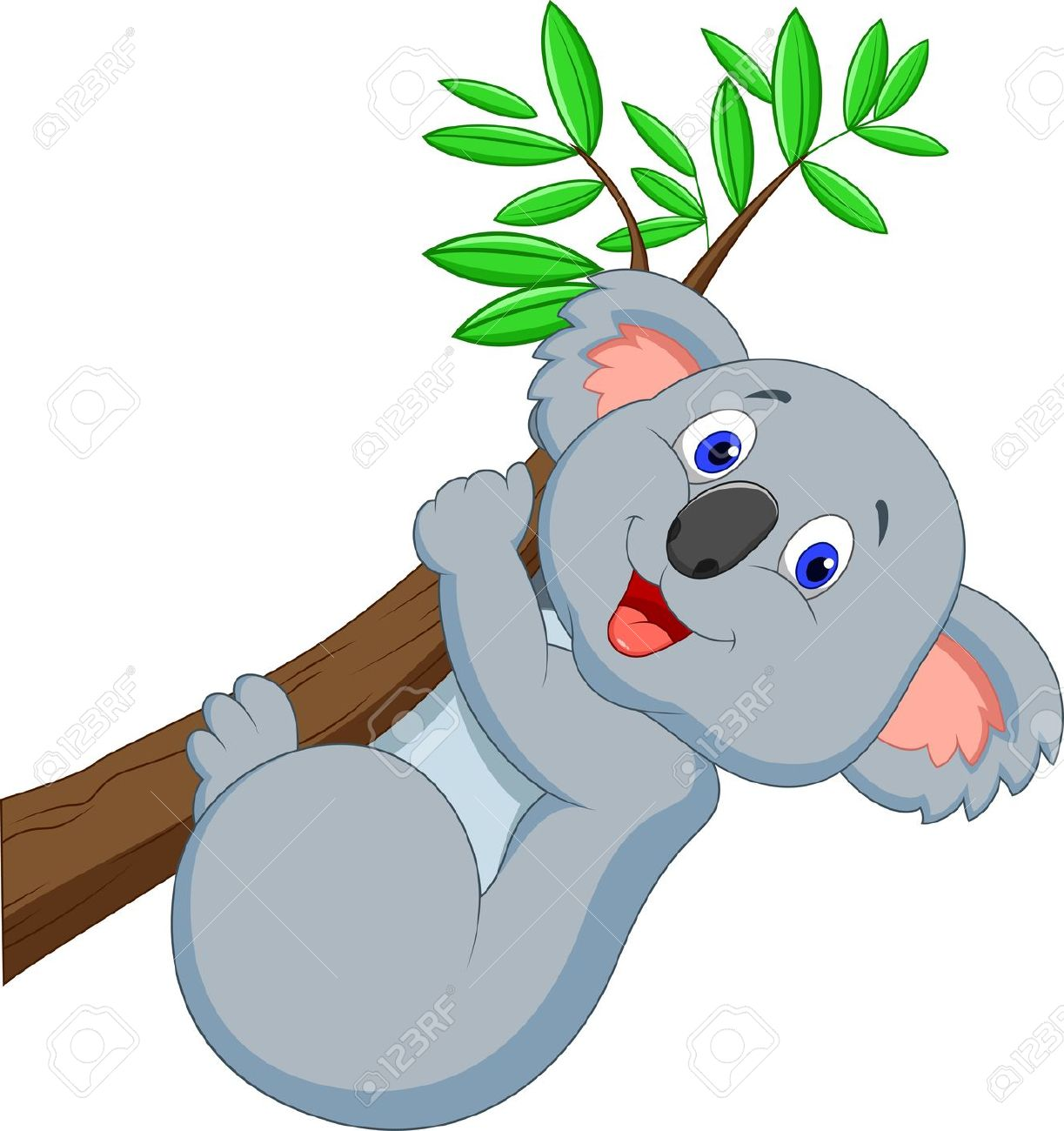 koala bear: Cute koala cartoon
