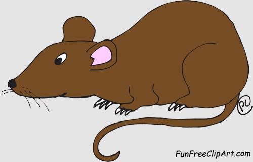 ... Angry Rat - A cartoon gra