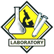 Laboratory Yellow.jpg-laboratory yellow.jpg-14