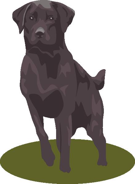 Labrador Retriever Black Clip Art At Clk-Labrador Retriever Black Clip Art At Clker Com Vector Clip Art-12