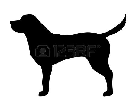labrador retriever: Vector black silhouette of a labrador retriever dog isolated on a white background