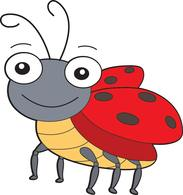 lady bug insect. Size: 68 Kb