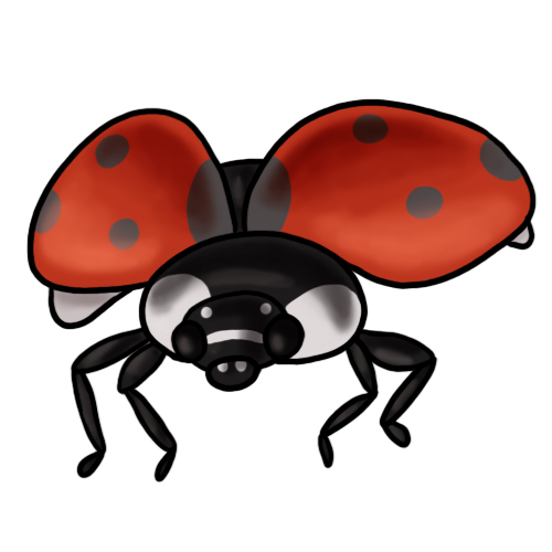 Ladybug Clip Art 11 ...