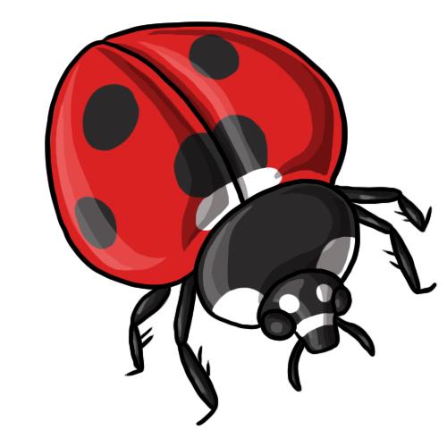 Ladybug Clip Art 5 U0026middot; Ladybug -Ladybug Clip Art 5 u0026middot; Ladybug Clip Art 6-9