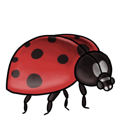 Ladybug Clip Art 7 U0026middot; Ladybug -Ladybug Clip Art 7 u0026middot; Ladybug Clip Art 8-10