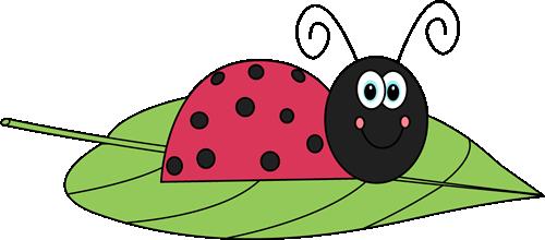 Ladybug On A Leaf-Ladybug on a Leaf-13