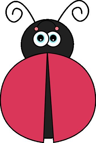 Ladybug Without Spots-Ladybug without Spots-19