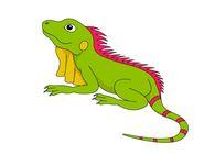 large green iguana lizard clipart. Size: 32 Kb