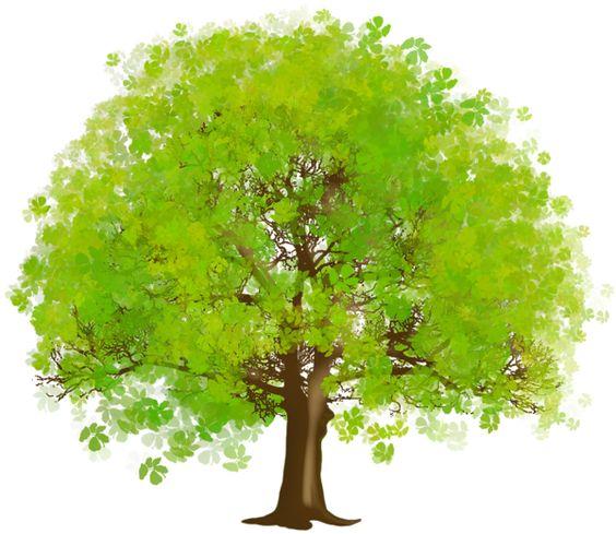 Large Green Tree Clipart Tree Art Trees -Large green tree clipart tree art trees and green-3