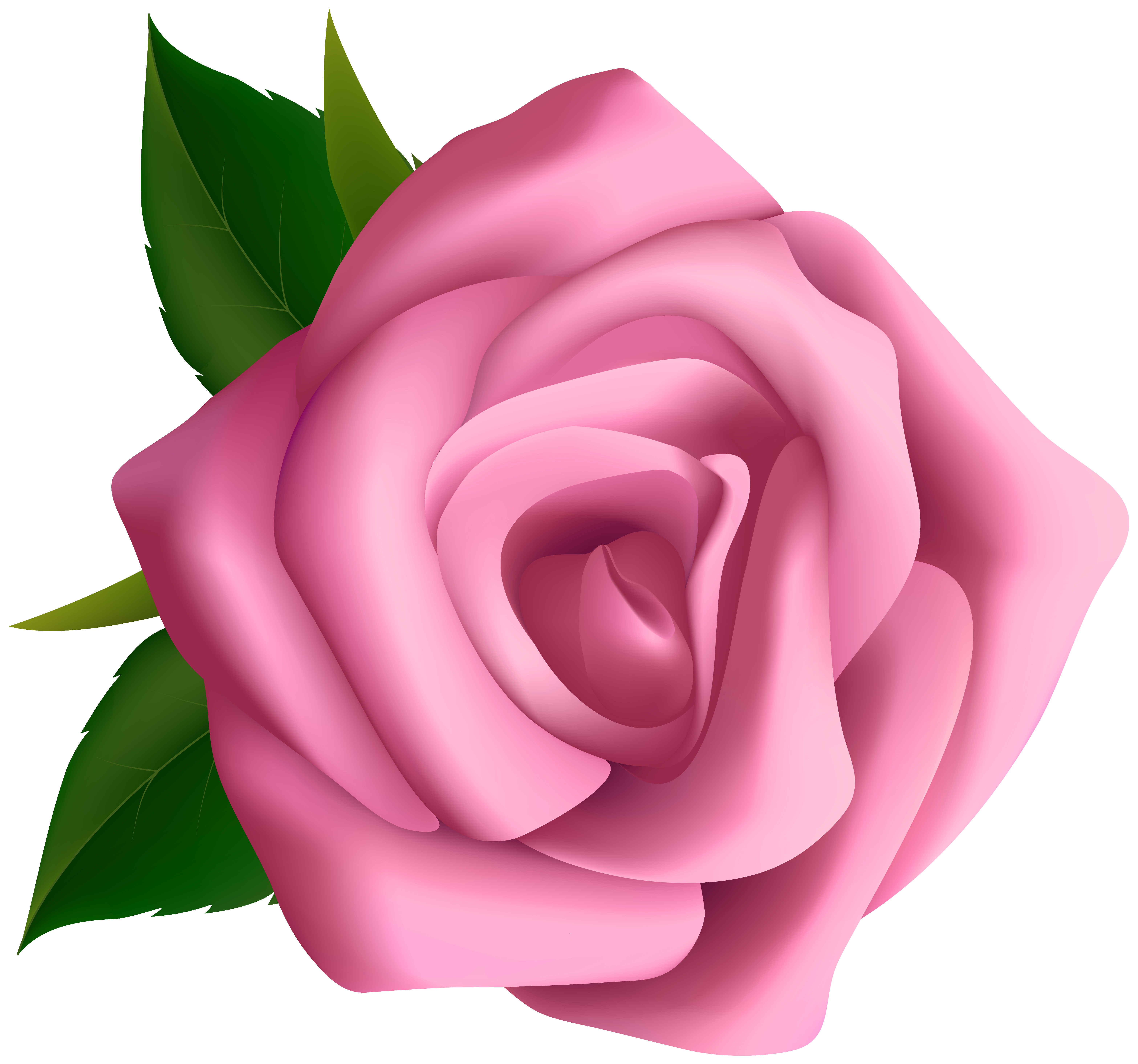 Large pink rose clipart blumen pink roses clip cliparting