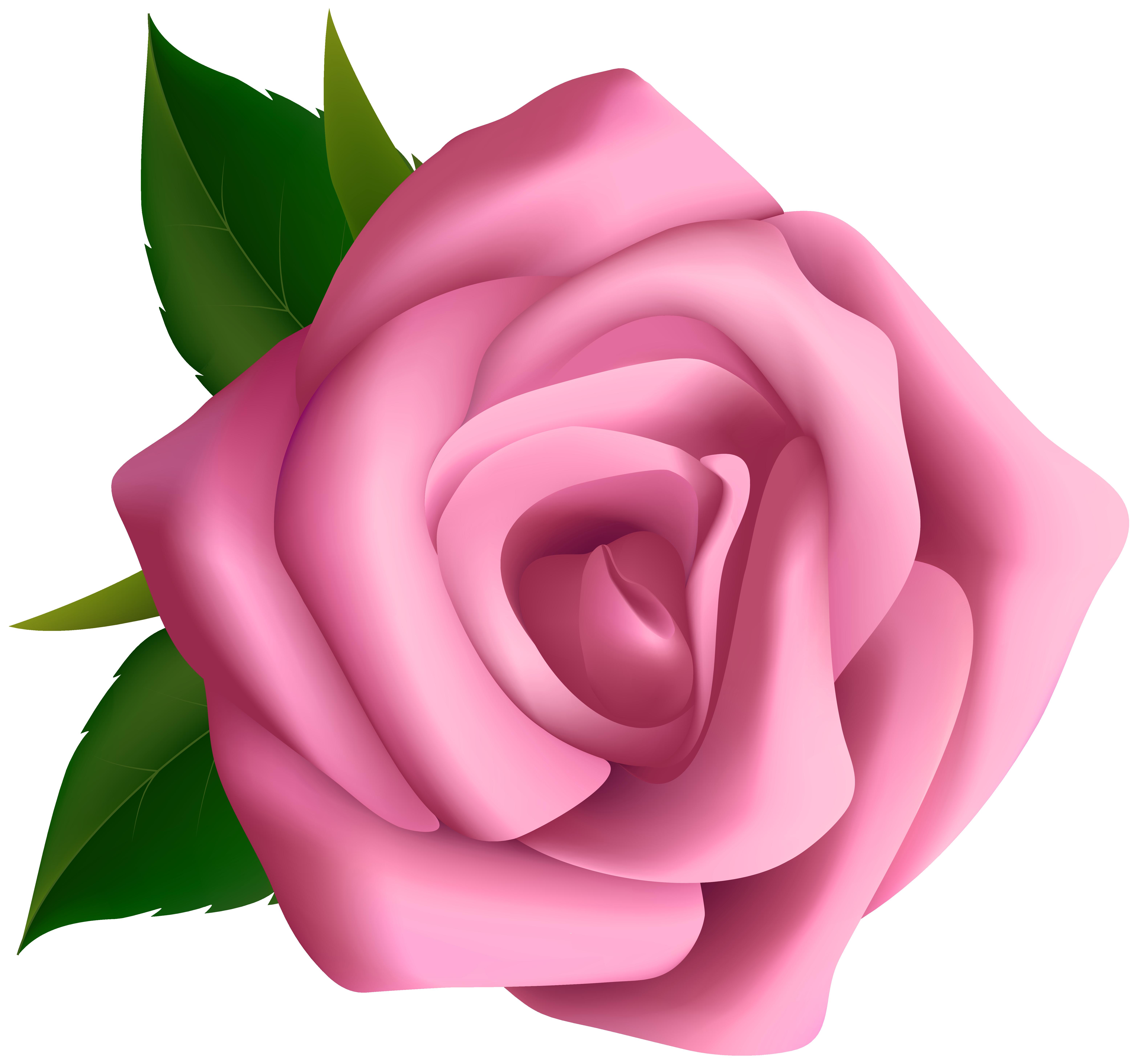 Large Pink Rose Clipart Blumen Pink Rose-Large pink rose clipart blumen pink roses clip cliparting-8