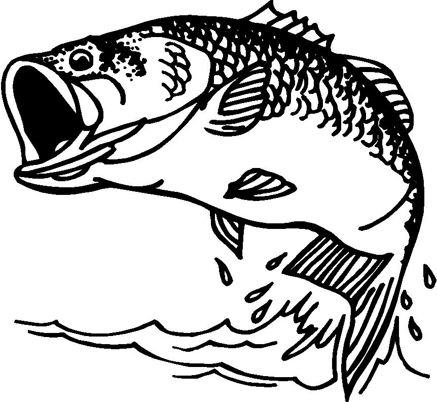 Latest Largemouth Bass Clip .-Latest Largemouth Bass Clip .-18