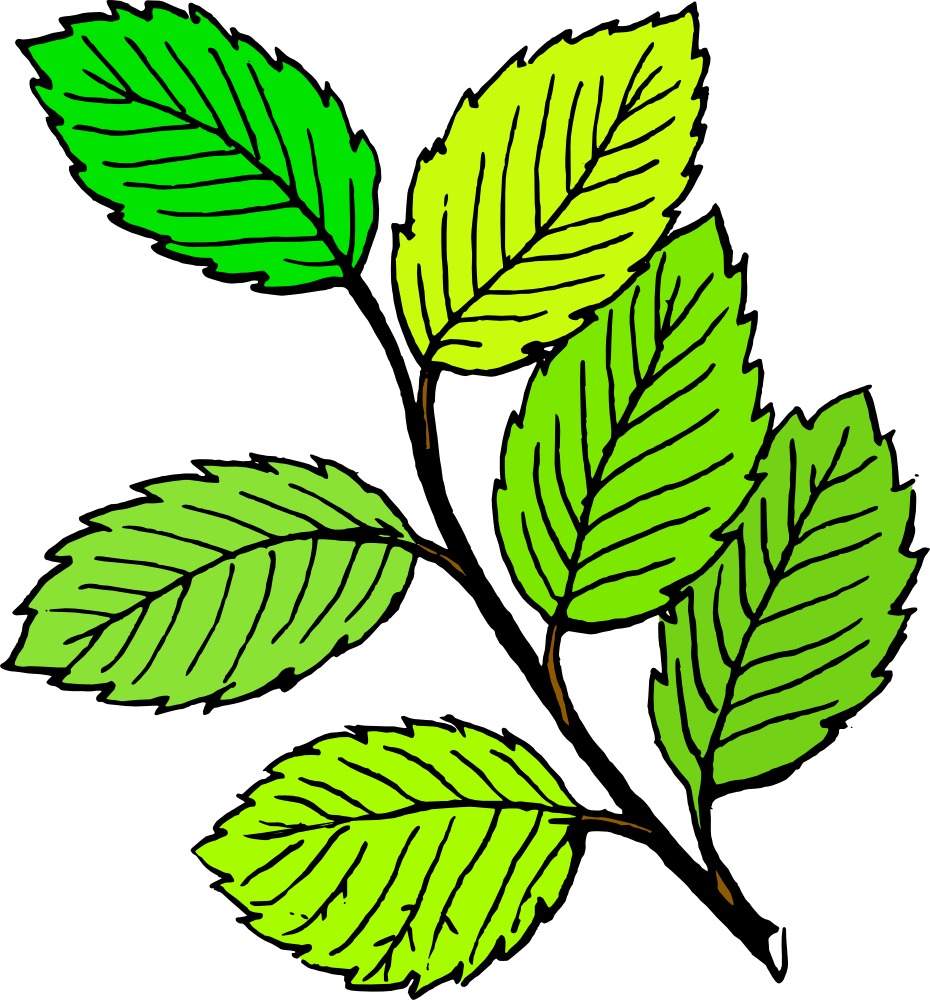 Leaf Clipart-leaf clipart-10