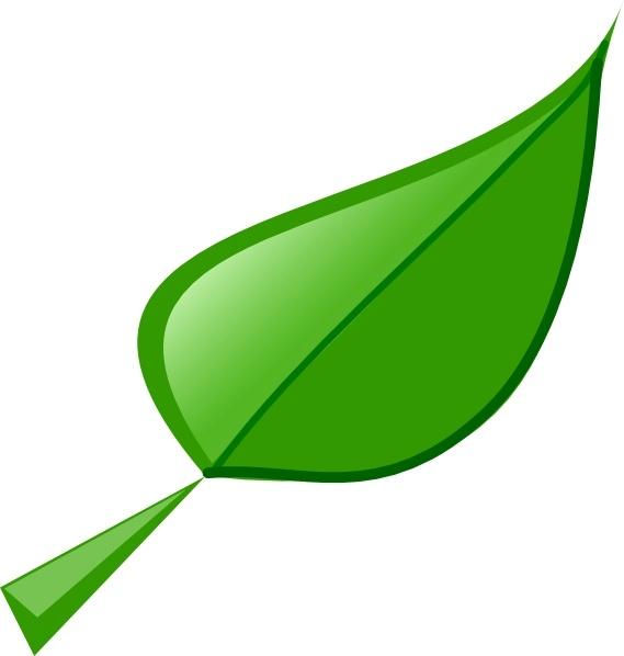 Leaf clip art Free vector 54.30KB