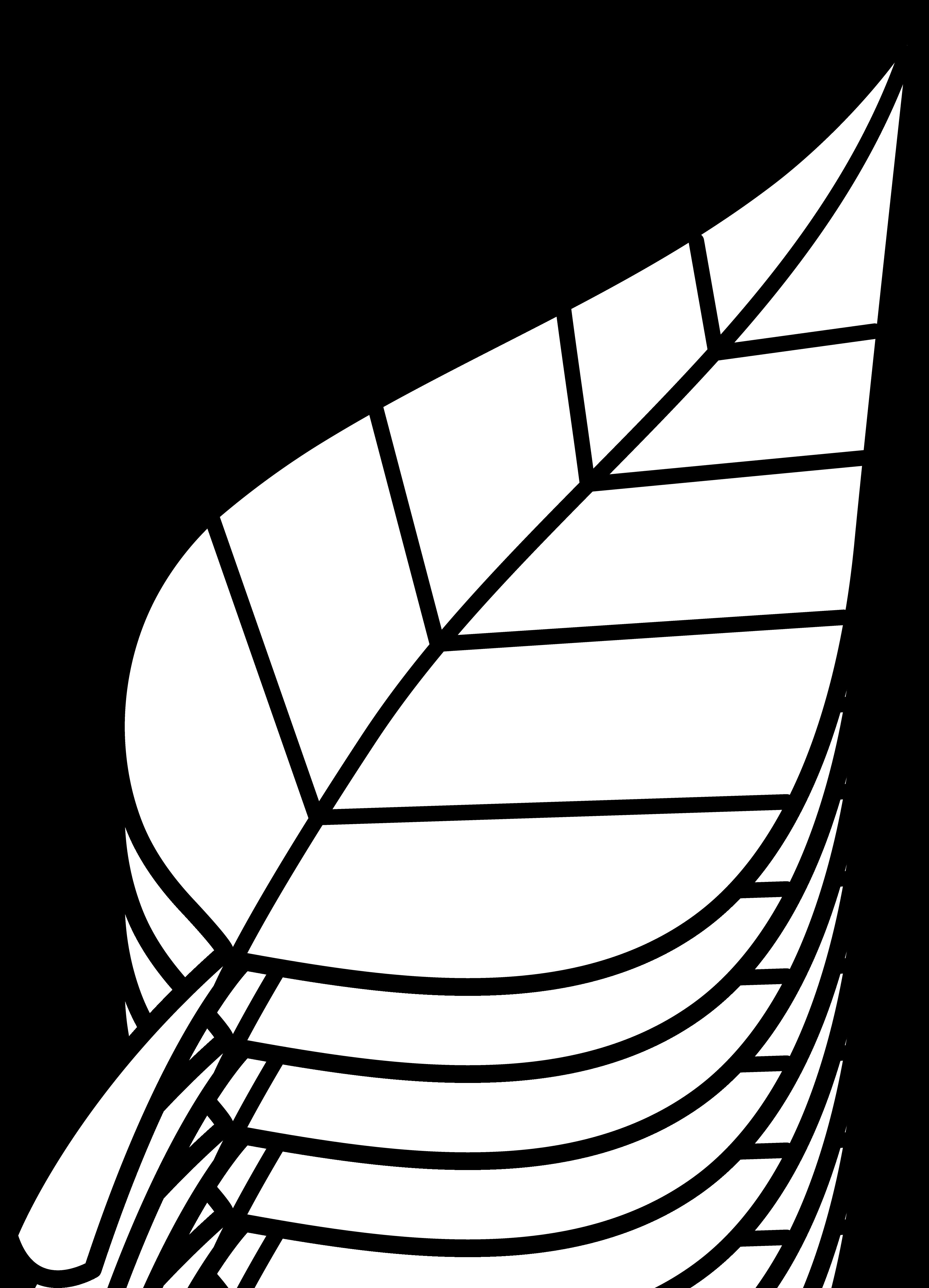 Leaf Clip Art Outline Clipart Panda Free Clipart Images
