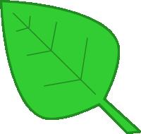 Leaf clipart dromgcb top