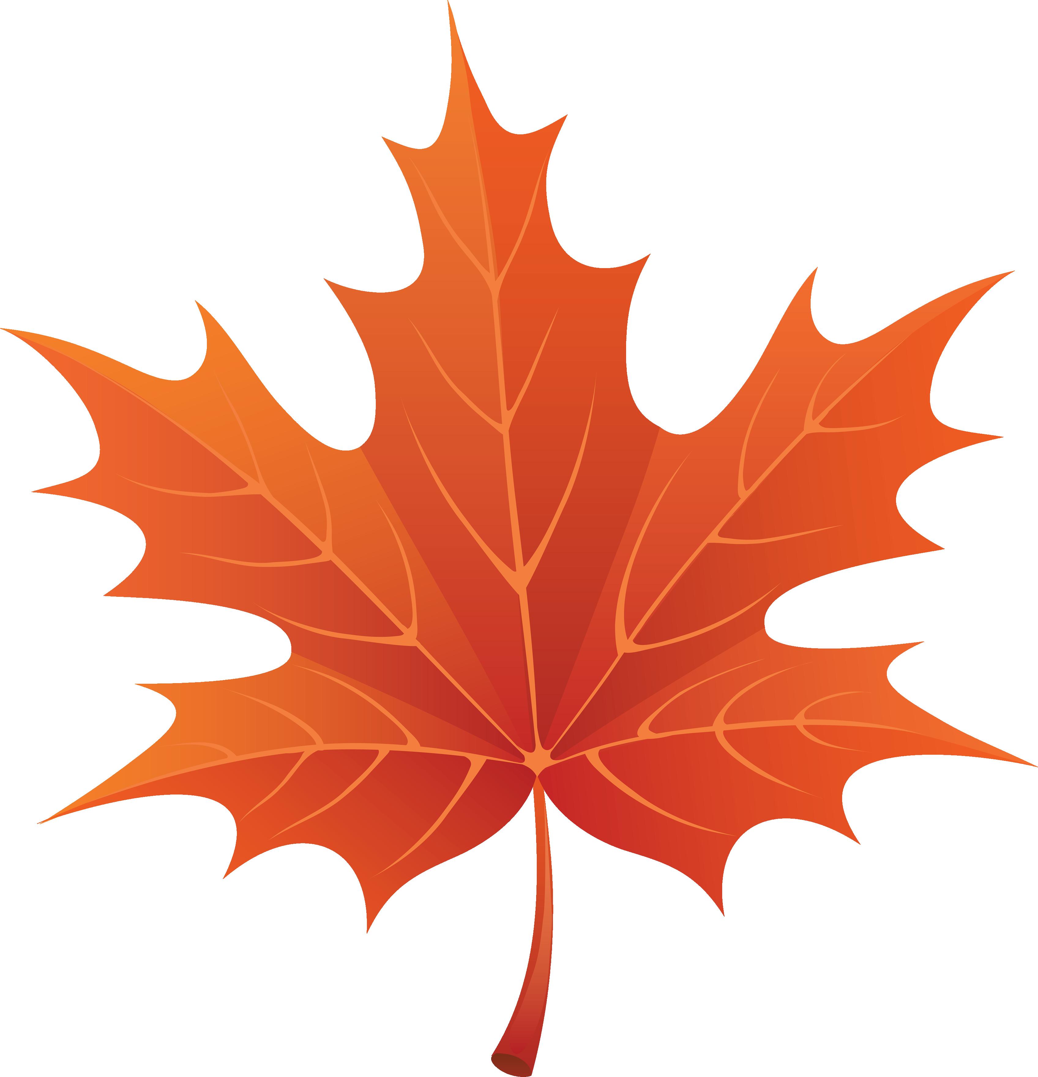 Maple Leaves Clipart - Clipar - Leaf Clipart