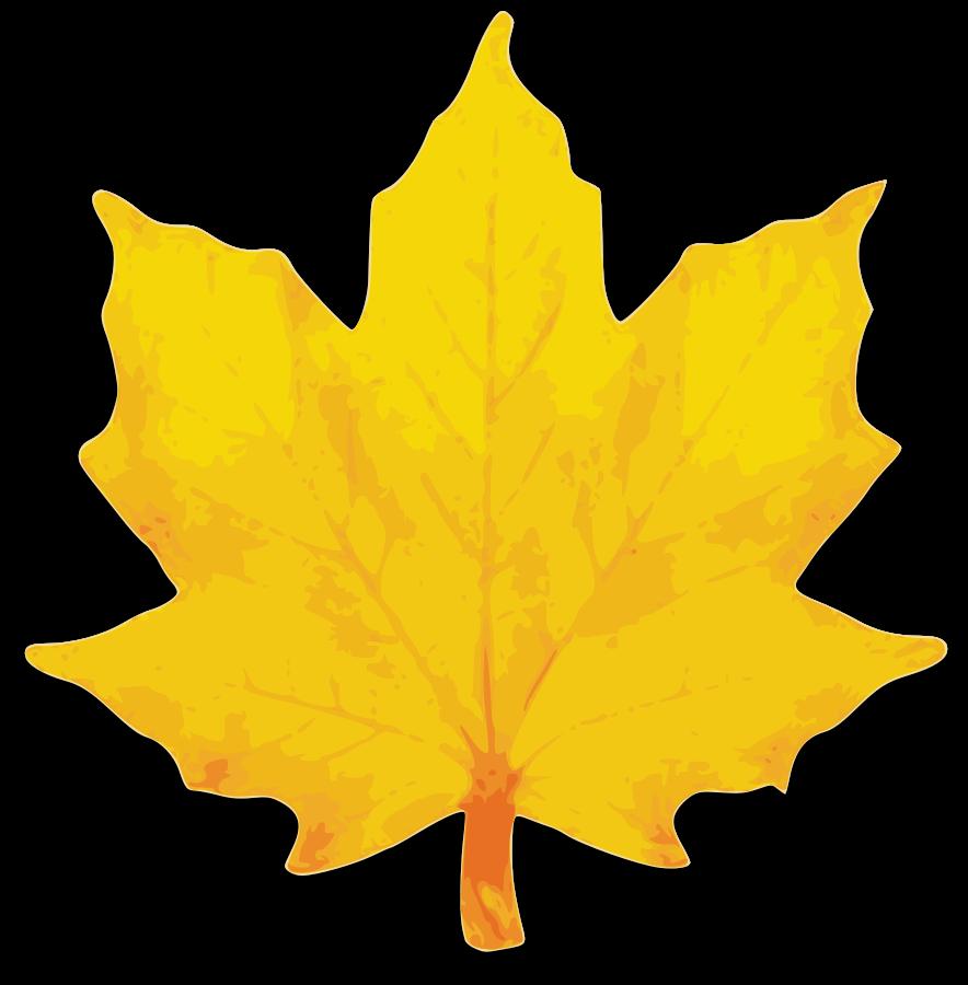 Leaf Vector Clipart Free Images At Clker-Leaf Vector Clipart Free Images At Clker Com Vector Clip Art-15