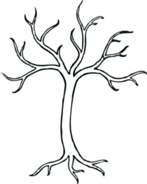 Leafless Tree Drawings | Clip Art-leafless tree drawings | clip art-10