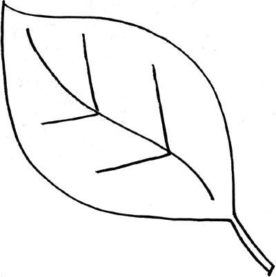 Leaves Black And White Leaf Outline Clip-Leaves black and white leaf outline clip art black and white clipart-12