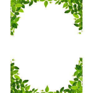 Leaves Border Page - Public .-leaves border page - public .-11