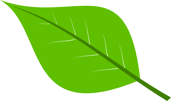 Large Green Leaves Clipart #1