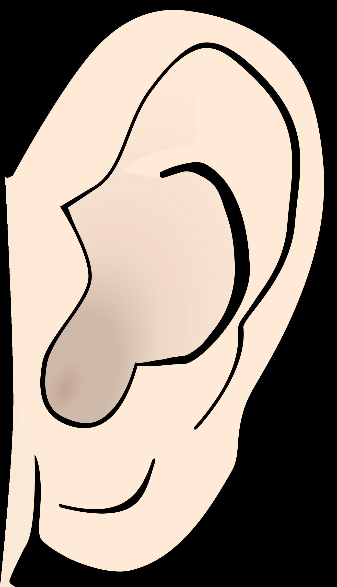Left Big Ears Clipart