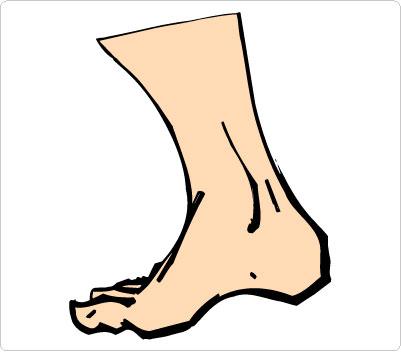 Legs Clip Art-Legs Clip Art-13