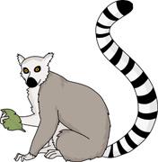 Lemur Clip Art-Lemur Clip Art-3