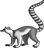 Lemur Clipart Size: 52 Kb