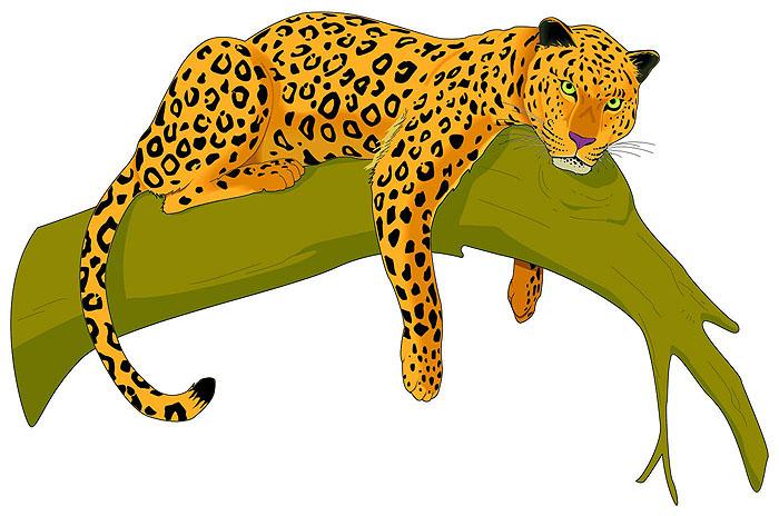 Leopard Clip Art-Leopard Clip Art-8