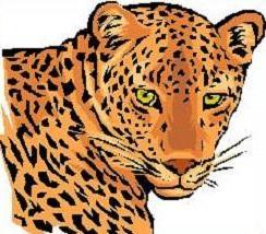 Leopard Clip Art. Leopard-Leopard clip art. Leopard-9