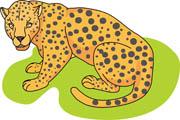Leopard Crouching Size: 59 Kb-Leopard Crouching Size: 59 Kb-14