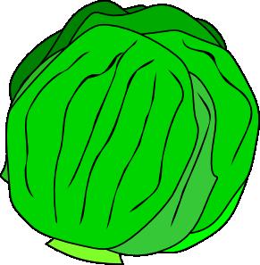 Lettuce Clipart-lettuce clipart-8
